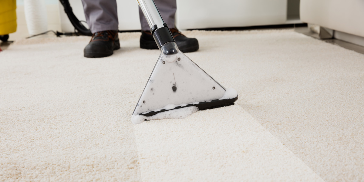 Carpet Cleaners - what services do they offer?