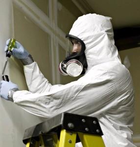 Asbestos Remover