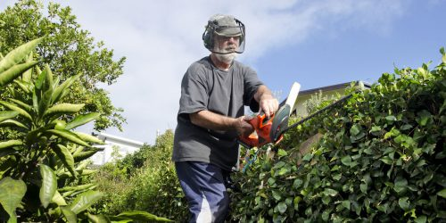 4-Reasons-for hiring a gardener
