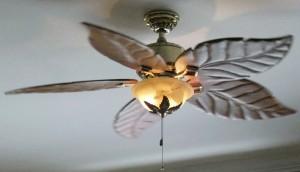 reverse ceiling fan