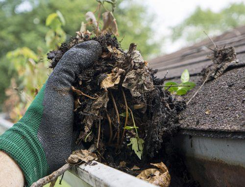 Don't Skip These 5 Home Maintenance Tasks Before Summer