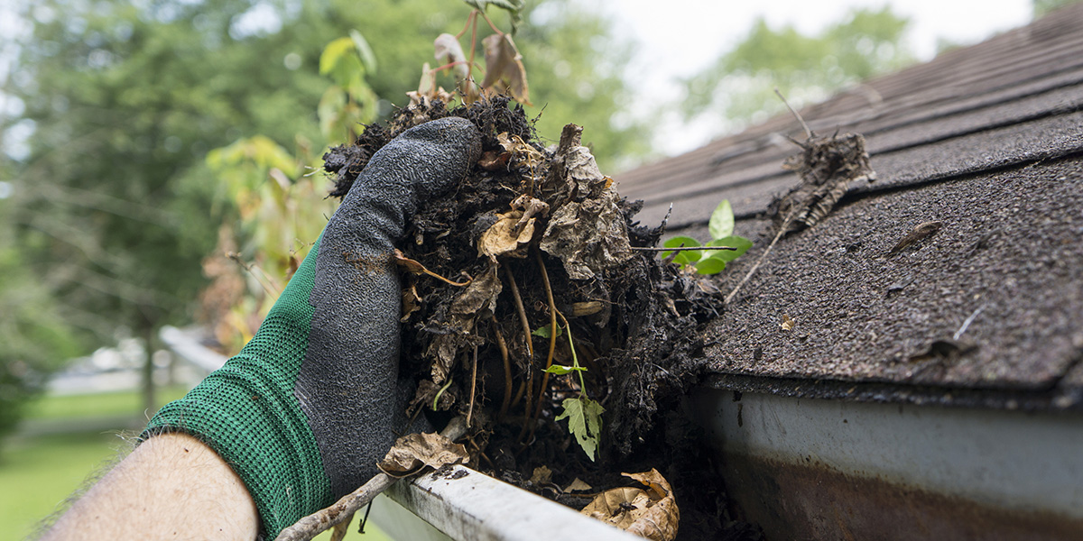Don't Skip These 5 Home Maintenance Tasks Before Summer