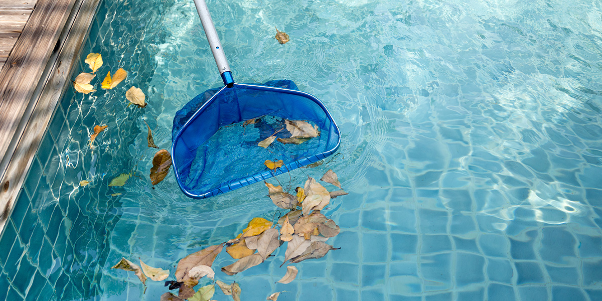 Essential Swimming Pool Maintenance To Do This Summer