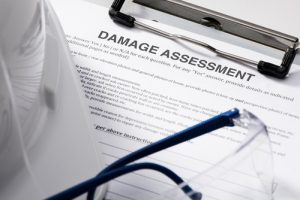 earthquake damage assessment form