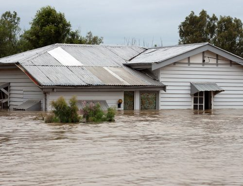 Cleaning Up After a Flood – A Homeowner's Guide