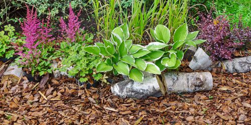 mulch types and uses