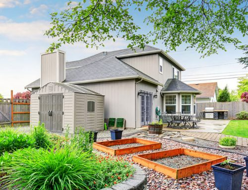 5 Steps to Transform Your Landscaping Dreams into a Backyard Reality