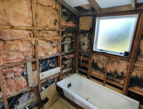 Small Bathroom Renovation Turns Major When The Unexpected Happens