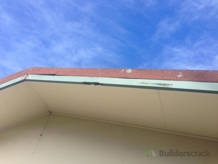 Trades Roofing Tauranga Jobs Builderscrack