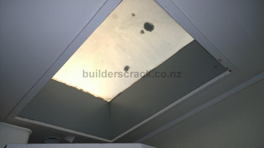 Bathroom Skylight (# 59737) : Builderscrack