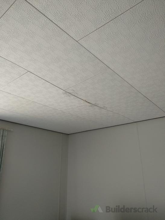 We Have Ceiling Tiles And One Is Sagging That Needs Repair