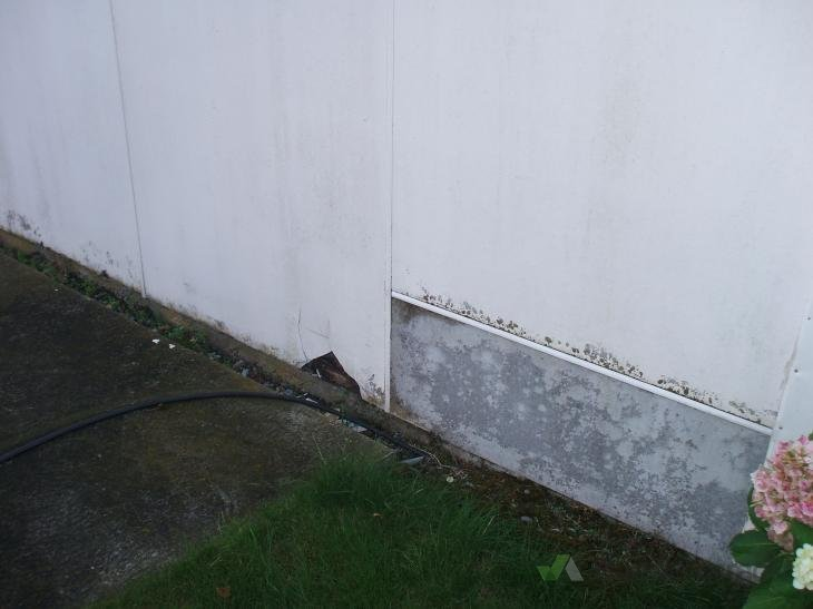 Exterior Wall Repair Steampresspublishing Com