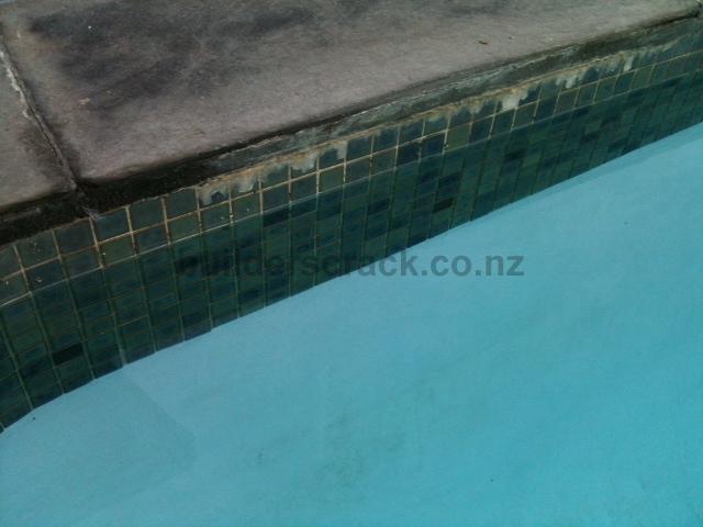 Replace Swimming Pool Tiles 26960 Builderscrack