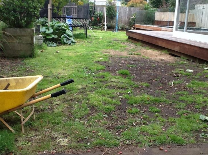 Landscaping fix my lawn 102512 builderscrack for Landscaping jobs auckland