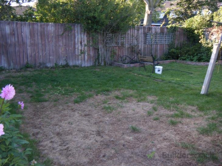 Damaged new lawn need fix or replace 118932 for Ready lawn christchurch